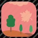 autumn, fall, field, leaf, nature, tree