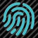 fingerprint, identity, biometric, security