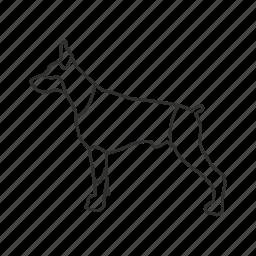 dog, guard dog, k9, mean dog, rottweiler, security dog, watch dog icon