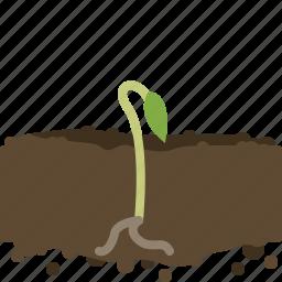 earth, garden, growth, plant, seeding, yumminky icon
