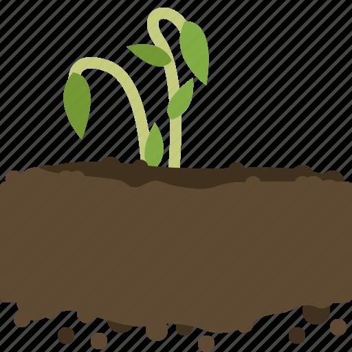 earth, farm, garden, growth, plant, seeding, yumminky icon