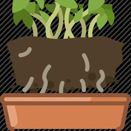 earth, earthen, flowerpot, plant, replanted, seeding, yumminky icon