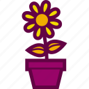 flower, flowerpot, garden, nature, pot icon