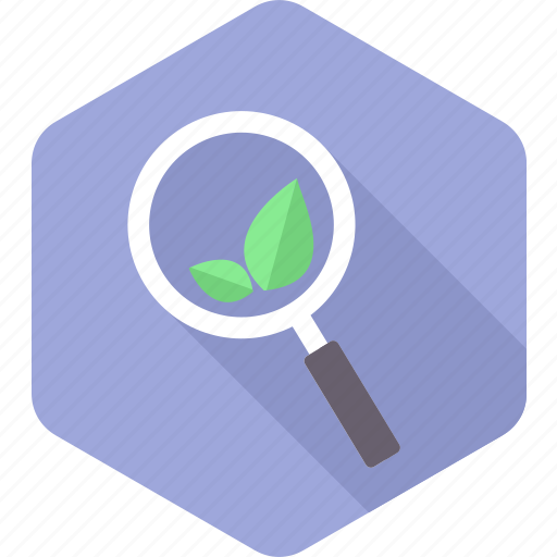 ecology, find, magnifier, search, seo, view, zoom icon