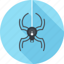 antivirus, bug, insect, protection, security, spider, virus