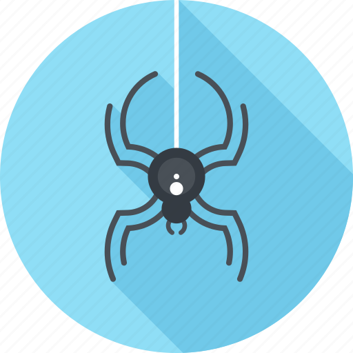 Antivirus, bug, insect, protection, security, spider, virus icon - Download on Iconfinder