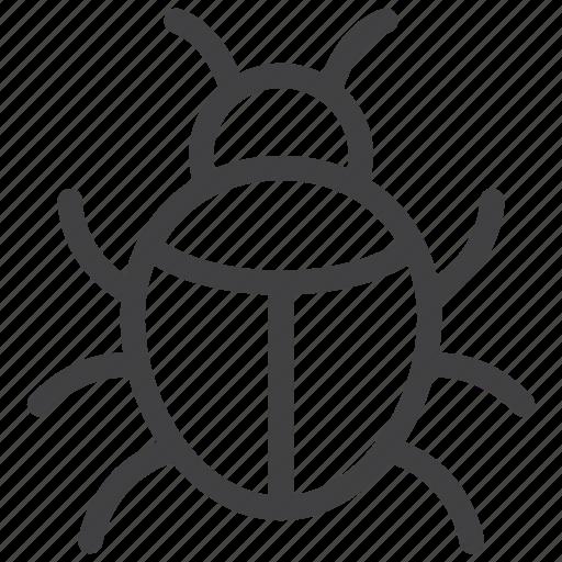 beetle, bug, error, insect, virus icon