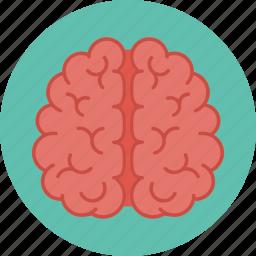 brain, brainstorm, brainstorming, creative, think icon