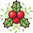 holly, winter, berry, xmas, decoration, christmas, leaf