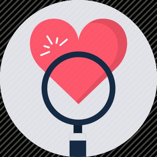 check, find, heart, love, magnifier, search, true icon