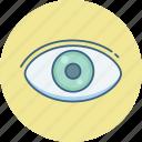 eye, eye checkup, eye test, search, view, vision