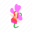 blossom, cartoon, flower, nature, orchid, pink, plant icon
