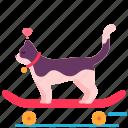 skateboard, cat, love, heart, sport, happy