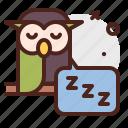 owl, relax, sleep, night