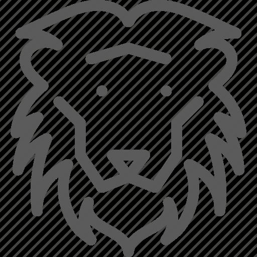 animal, beast, lion, nature, pet, wild icon