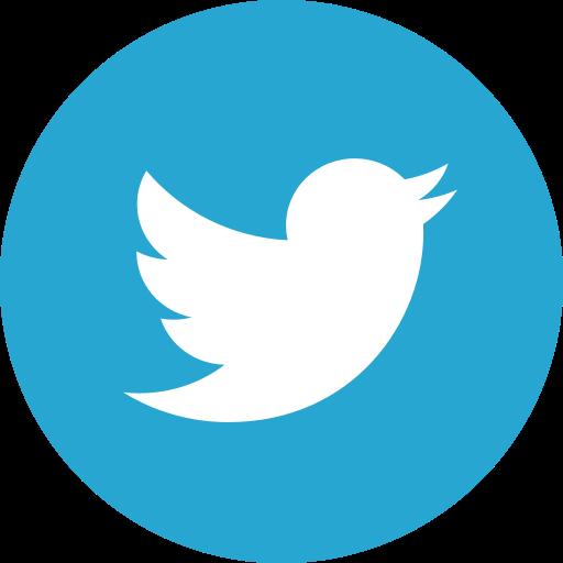 bird, socialnetwork, twitter icon