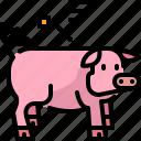agriculture, animal, farm, pig, pork, wildlife icon