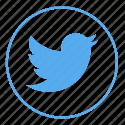 bird, internet, media, network, social, tweet, twitter icon