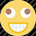 emoticon, emoji, dumb, face