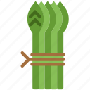 asparagus, cooking, food, gastronomy icon
