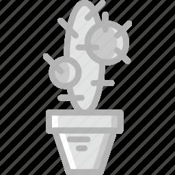 belongings, cactus, furniture, households icon