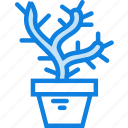 belongings, flower, furniture, households, pot icon