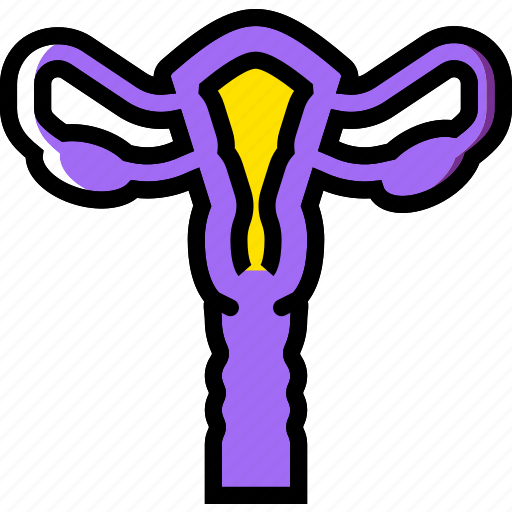 health, healthcare, medical, uterus icon