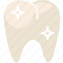 health, healthcare, healthy, medical, premolar