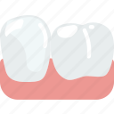 health, healthcare, lower, medical, premolar icon