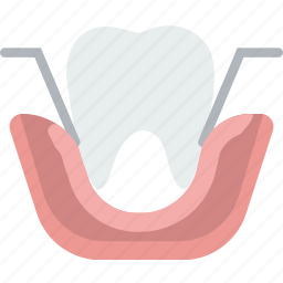 extraction, health, healthcare, medical, molar icon