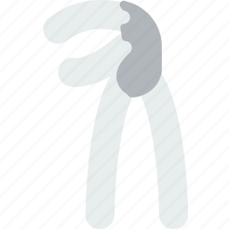 grapple, health, healthcare, medical, tooth icon
