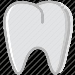 health, healthcare, medical, premolar icon