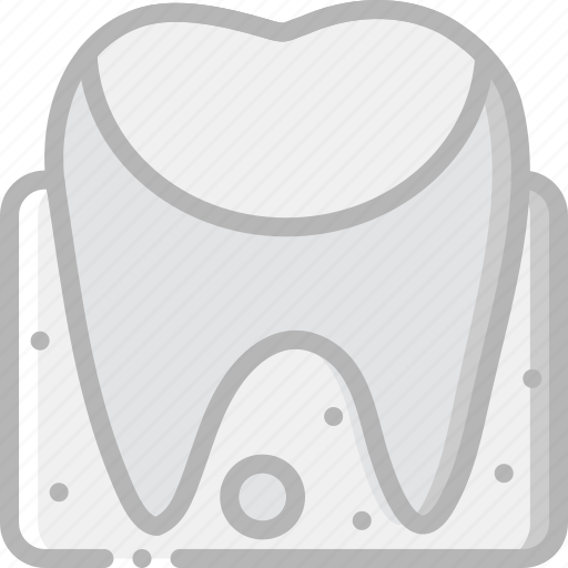 anatomy, gum, health, healthcare, medical icon