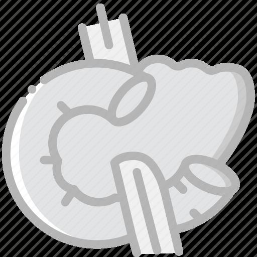 health, healthcare, medical, pancreas icon