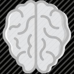 brain, health, healthcare, medical icon