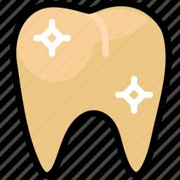 health, healthcare, healthy, medical, premolar icon