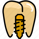 health, healthcare, implant, medical, premolar icon