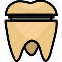 crown, health, healthcare, medical, molar icon