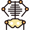 health, healthcare, medical, skeleton icon