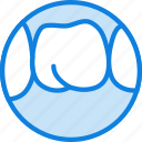 health, healthcare, medical, molar icon