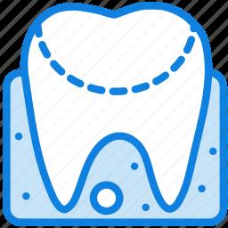 anatomy, gum, health, healthcare, medical icon