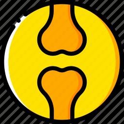 femur, health, healthcare, joint, medical icon