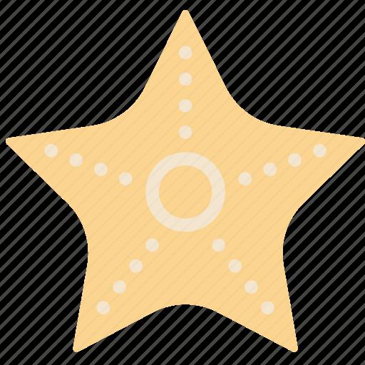 holiday, seaside, starfish, vacation icon