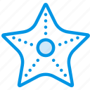 holiday, seaside, starfish, vacation, webby icon