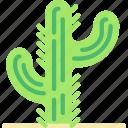 cactus, cowboy, desert, green, west, wild