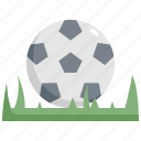 ball, competition, football, grass, soccer, sport icon