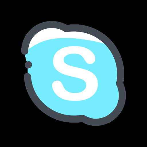 media, network, skype, social, web icon