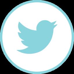 internet, logos, social, twitter icon