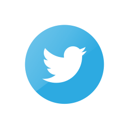 connection, media, social, tweet, twitter, web icon