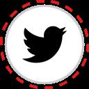 brand, company, logo, media, social, twitter icon